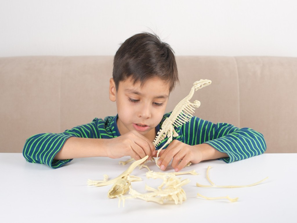 Dinosaur Fossil Sets That Your Child Will Love Putting Together