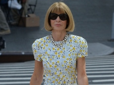 Anna Wintour's Divorce Happened When No One Was Looking