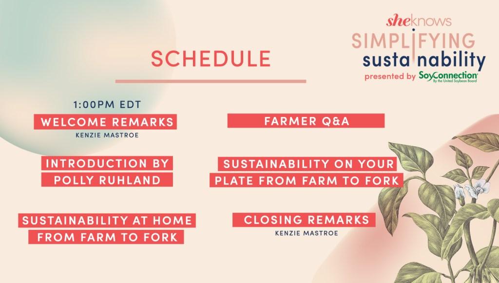 Simplifying Sustainability agenda