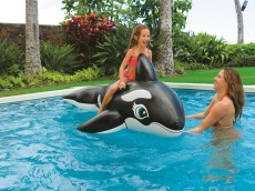 Next-Level Pool Floats for Kids to Turn the Pool Into a Water Park