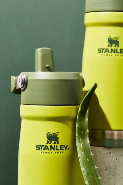 Stanley aloe product