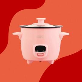 dash rice cooker