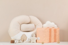 Comfortable Breastfeeding Pillows That Provide Maximum Support